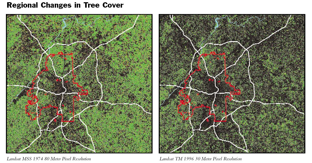 Tree_Cover_Changes
